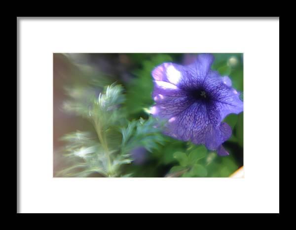 Purple Flower Framed Print featuring the photograph Purple In Monets Garden by Jennifer McDuffie