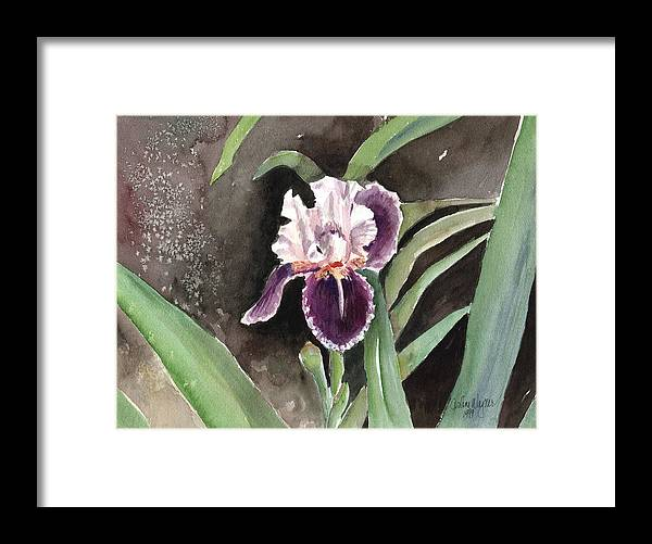 Flower Framed Print featuring the painting Purple Iris by Arline Wagner