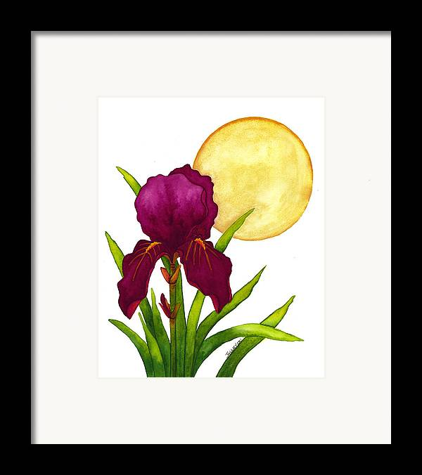 Iris Framed Print featuring the painting Purple Iris by Stephanie Jolley
