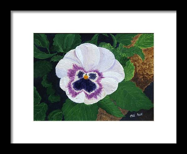 Purple Pansy Framed Print featuring the painting Purple Pansy by Philip Hall