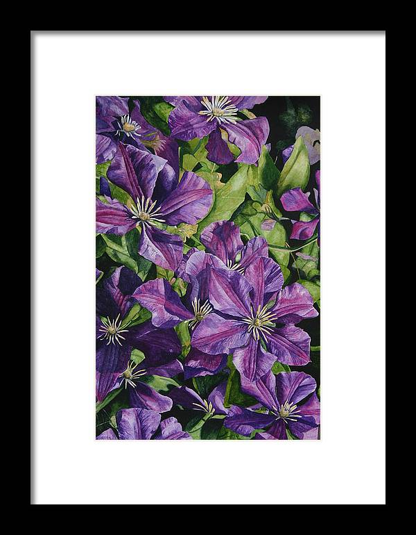 Clematis Framed Print featuring the painting Purple Persuasion by Helen Shideler