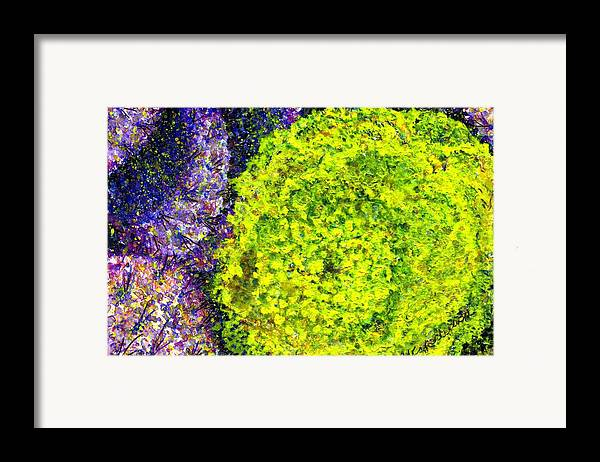 Watercolor Framed Print featuring the painting Purple Prickly Pear Cactus Blossom by Cynthia Ann Swan