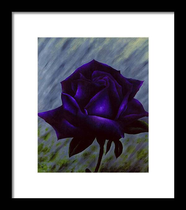 Rose Framed Print featuring the painting Purple Rose by Brandon Sharp