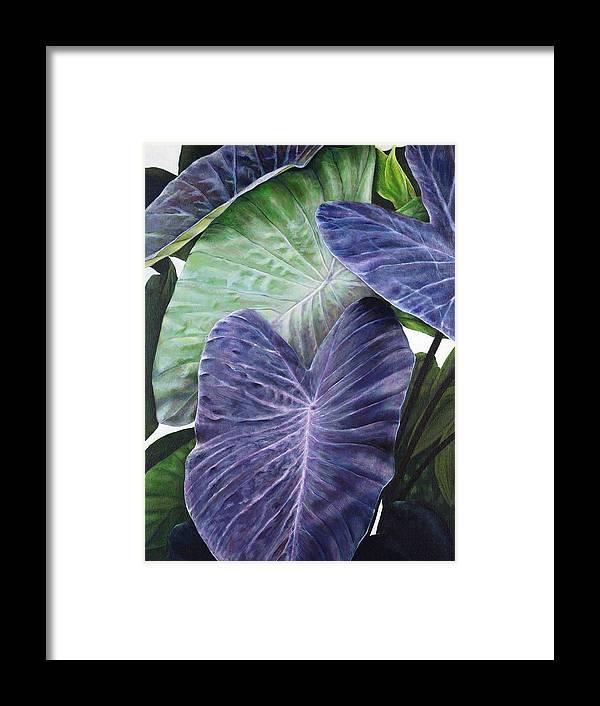 Acrylic Framed Print featuring the painting Purple Taro by Sandra Blazel - Printscapes