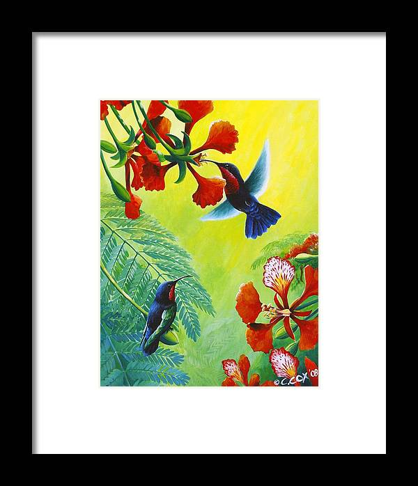 Chris Cox Framed Print featuring the painting Purple-throated Caribs And Flamboyant by Christopher Cox