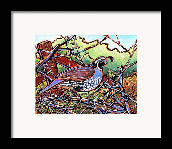 Quail Framed Print featuring the painting Quail by Nadi Spencer