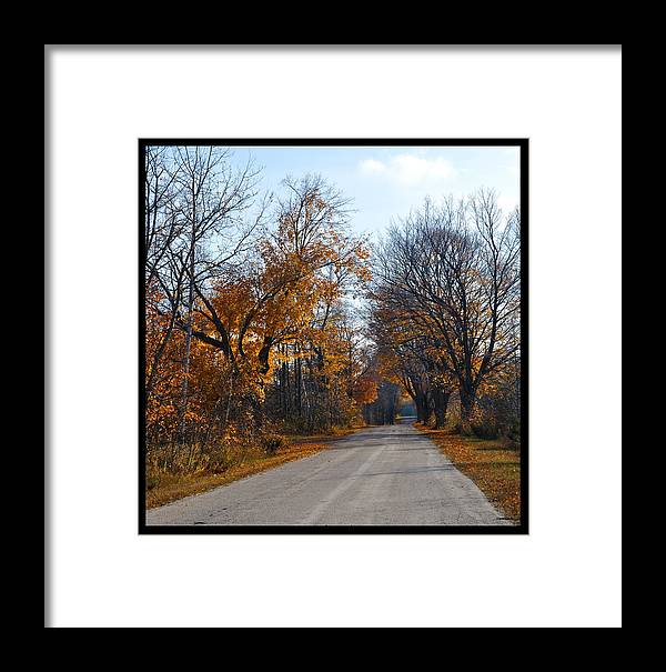 Road Framed Print featuring the photograph Quarterline Road by Tim Nyberg