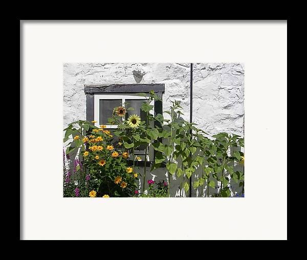 Quebec Garden Framed Print featuring the photograph Quebec Floral by Nancy Ferrier