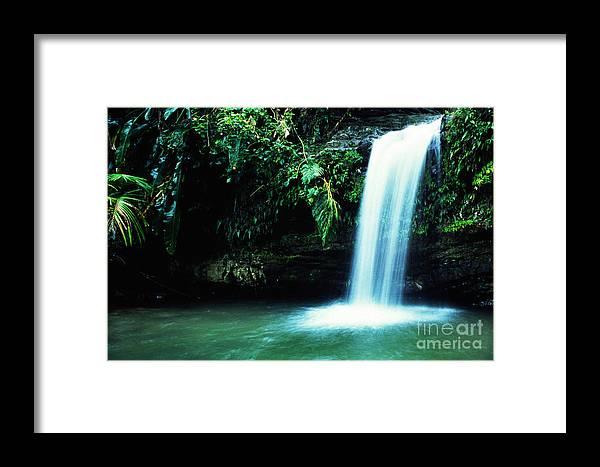 Puerto Rico Framed Print featuring the photograph Quebrada Juan Diego Waterfall Mirror Image by Thomas R Fletcher