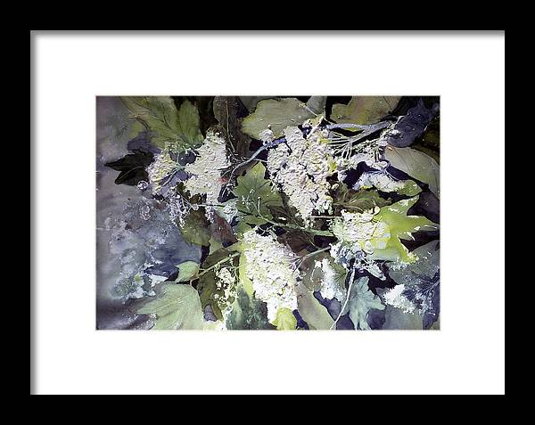 Queen Annes Lace Framed Print featuring the painting Queen Anne's Lace by Connie Williams