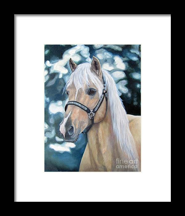 Welch Cob Framed Print featuring the painting Queenie by Heidi Parmelee-Pratt