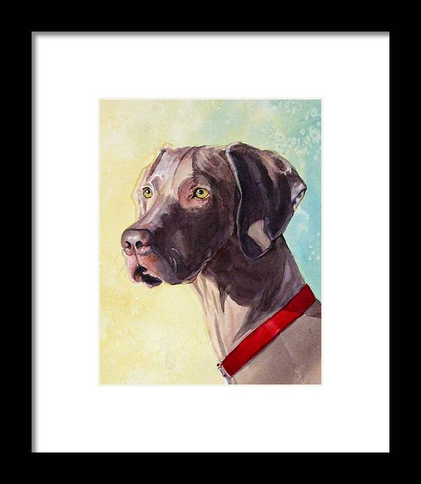Canine Framed Print featuring the painting Quelly by Gina Hall