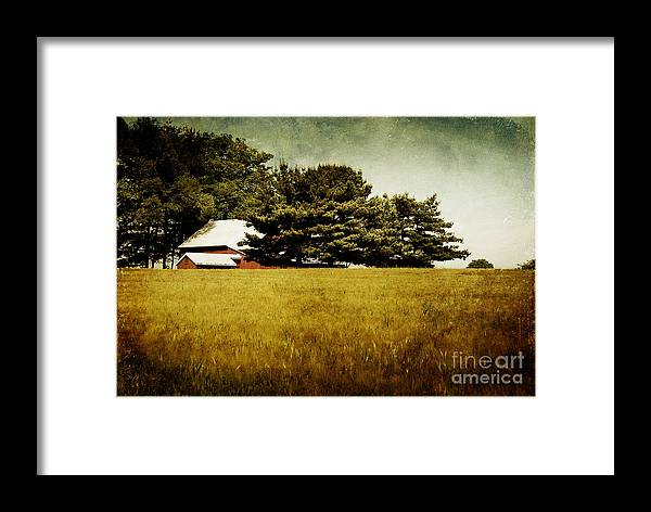Barn Framed Print featuring the photograph Quiet by Lois Bryan