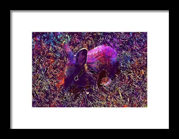Rabbit Framed Print featuring the digital art Rabbit Animal Baby Rabbit Bunny by PixBreak Art