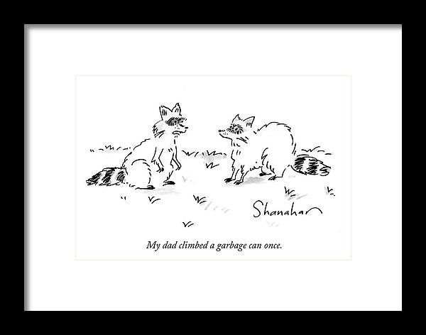 My Dad Climbed A Garbage Can Once. Framed Print featuring the drawing Raccoon Children by Danny Shanahan