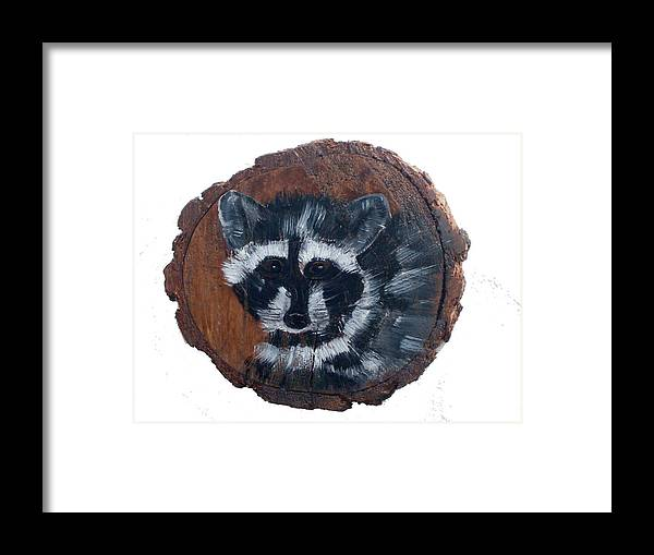 Racoon Framed Print featuring the painting Raccoon by Mikki Alhart