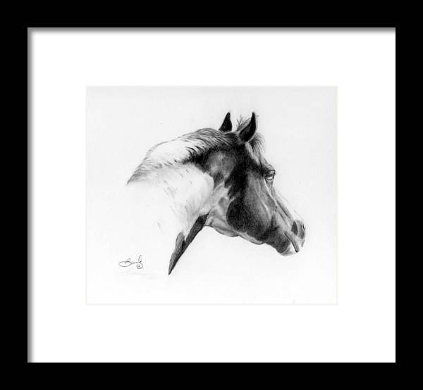 Pencil Drawing Framed Print featuring the drawing Racer by Beverly Johnson