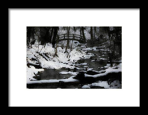 Nature Framed Print featuring the photograph Rachel Carson Trail by Shelley Smith
