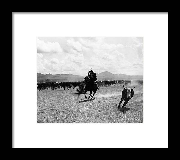 Raguero Cutting Out A Cow From The Herd (b/w Photo)wild West; Stetson; Cattle; Gallop; Round-up; Cowboy; Herding; Cattle; Plains; Old West; Western; Horse; Horseback; Rider; Riding; American Landscape; Atmospheric; Rustler Framed Print featuring the photograph Raguero Cutting Out A Cow From The Herd by Raguero cutting out a cow from the herd