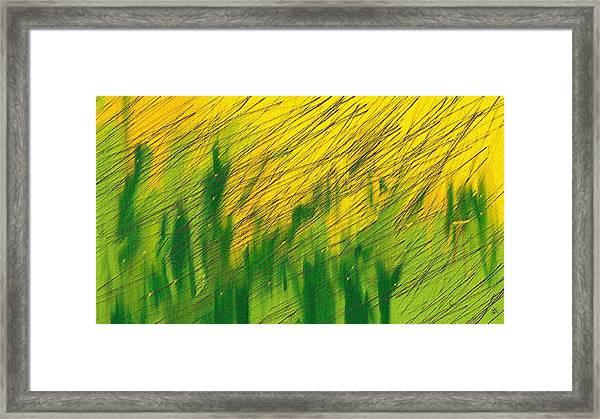 Mustard Field Framed Print featuring the digital art Rain Over Mustard Field by Mayank Chhaya
