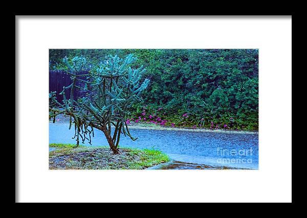 Rain Framed Print featuring the photograph Rain Storm On Lake Linda by William H Freeman Jr
