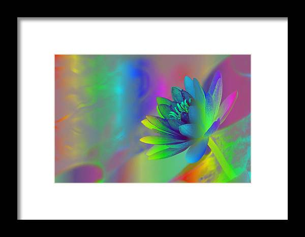 Rainbow Framed Print featuring the photograph Rainbow Lily by Donna Bentley