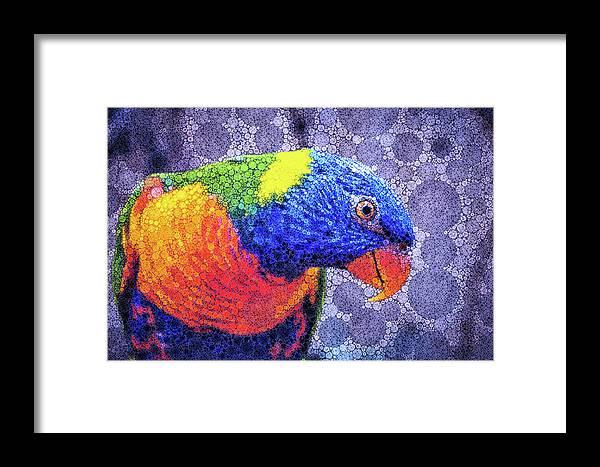Rainbow Lorikeet Framed Print featuring the mixed media Rainbow Lorikeet by Susan Maxwell Schmidt