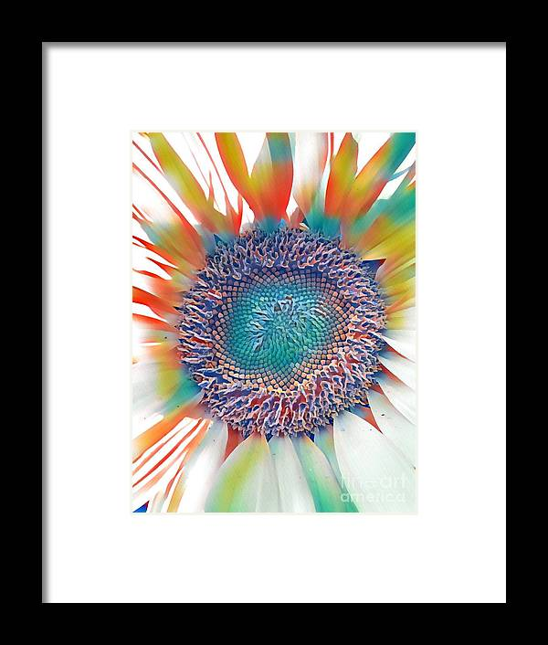 Sunflower Framed Print featuring the photograph Rainbow Sunflower by Susan Carella