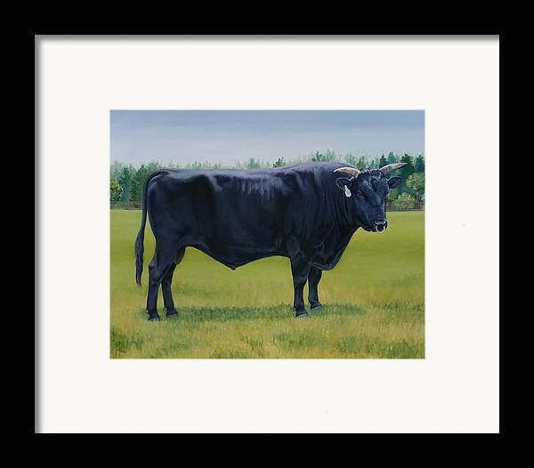 Bull Framed Print featuring the painting Ralphs Bull by Stacey Neumiller