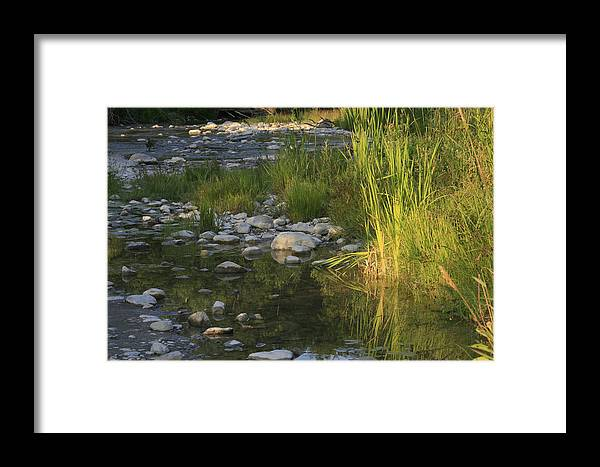 River Framed Print featuring the photograph Ramble by Alan Rutherford