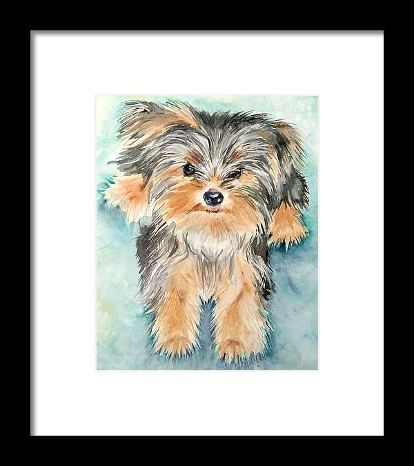 Canine Framed Print featuring the painting Rascall by Gina Hall