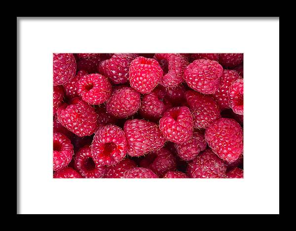 Background Framed Print featuring the photograph Raspberry by Anastasy Yarmolovich