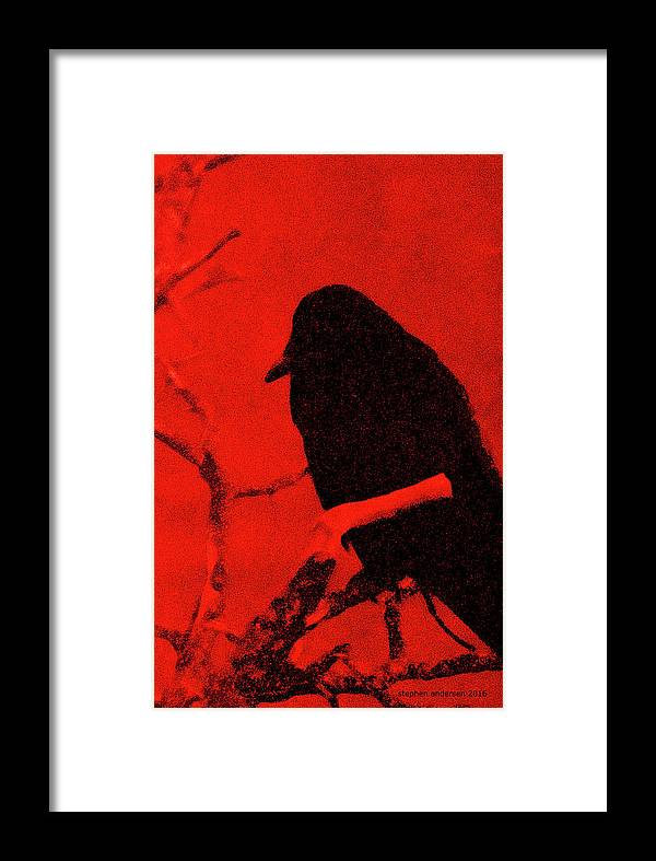Framed Print featuring the photograph Raven by Stephen Andersen
