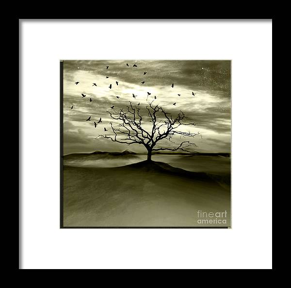 Landscape Framed Print featuring the photograph Raven Valley by Jacky Gerritsen