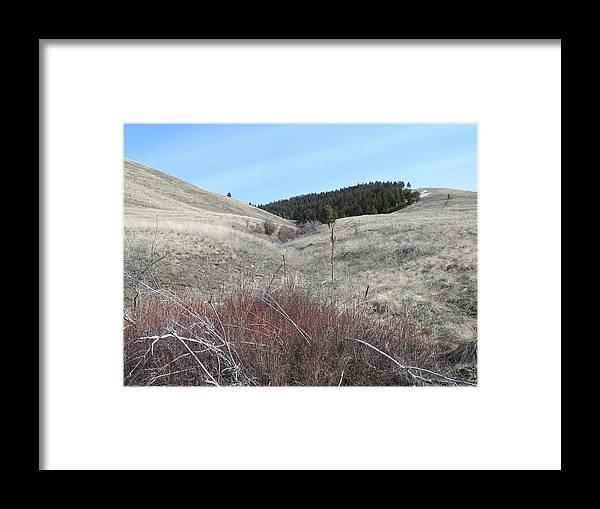 Framed Print featuring the photograph Ravine Access by Dan Hassett