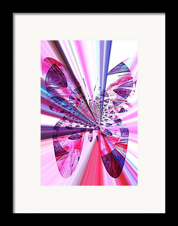 Rays Framed Print featuring the photograph Rays Of Butterfly by Amanda Eberly-Kudamik