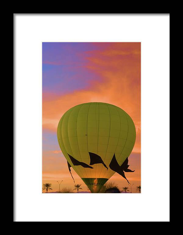 Nature Framed Print featuring the photograph Ready For Flight by Richard Jenkins