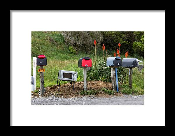 New Zealand Framed Print featuring the photograph Ready For Pizza Delivery by Peteris Vaivars