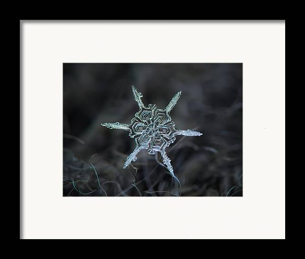 Snowflake Framed Print featuring the photograph Real Snowflake Photo - The Shard by Alexey Kljatov