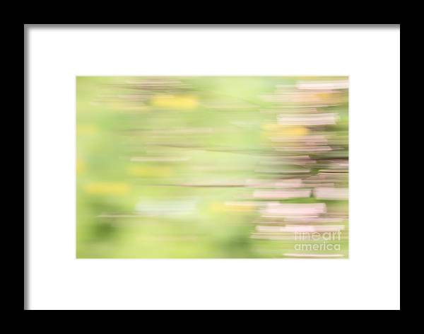 Green Framed Print featuring the photograph Rectangulism - S04a by Variance Collections
