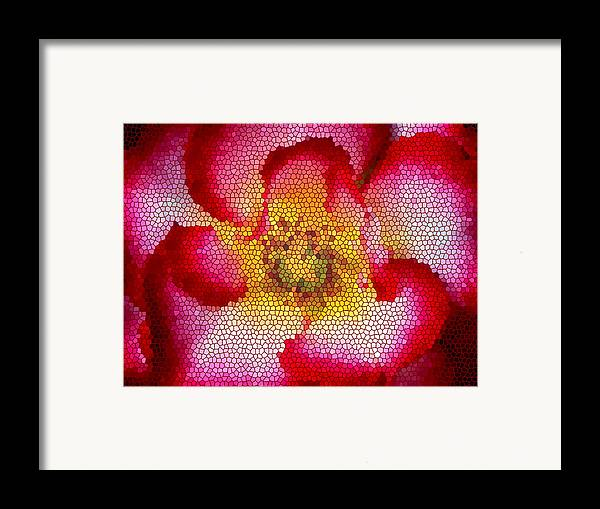Floral Framed Print featuring the photograph Red And White And Glass by Leonard Rosenfield
