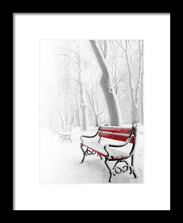 Beautiful Framed Print featuring the photograph Red Bench In The Snow by Jaroslaw Grudzinski