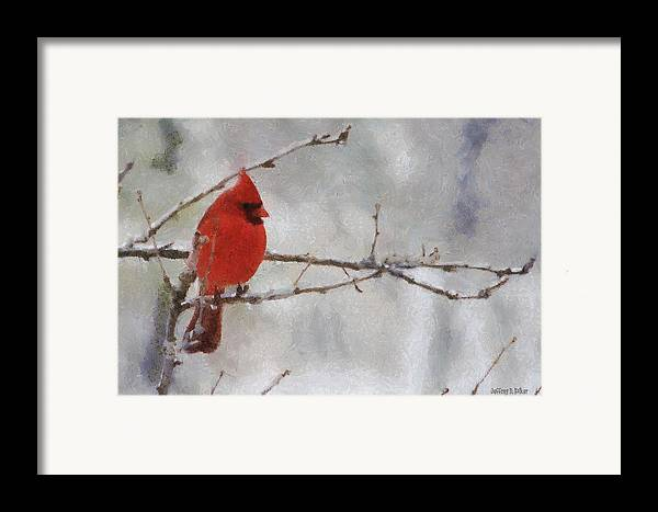 Bird Framed Print featuring the painting Red Bird Of Winter by Jeff Kolker