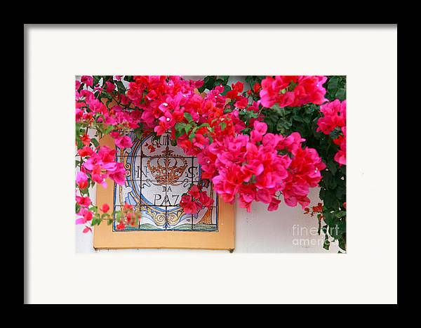 Bougainvilleas Framed Print featuring the photograph Red Bougainvilleas by Gaspar Avila