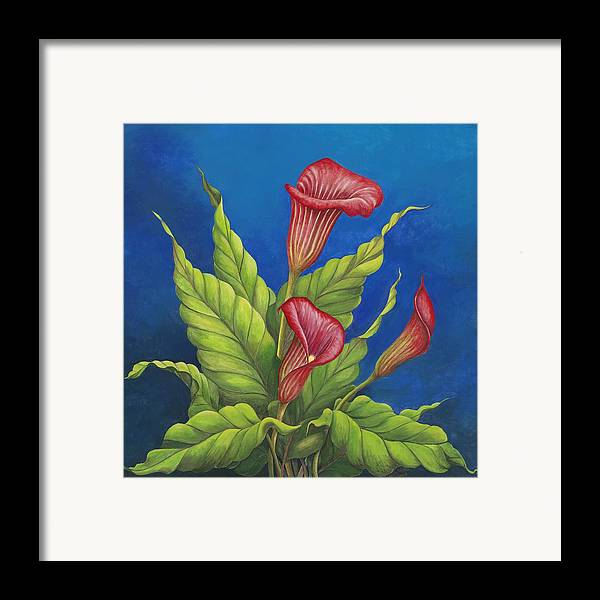 Red Calla Lillies On Blue Background Framed Print featuring the painting Red Calla Lillies by Carol Sabo