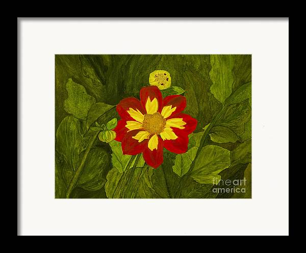 Red Framed Print featuring the painting Red Dahlia by Louise Magno