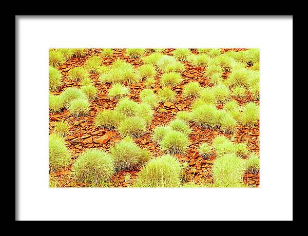 Newman Framed Print featuring the photograph Red Earth And Spinifex 2am-111716 by Andrew McInnes