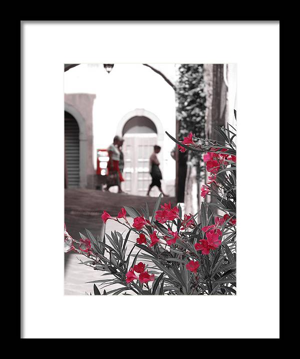 Flowers Framed Print featuring the photograph Red Flowers Black And White by Jeff White