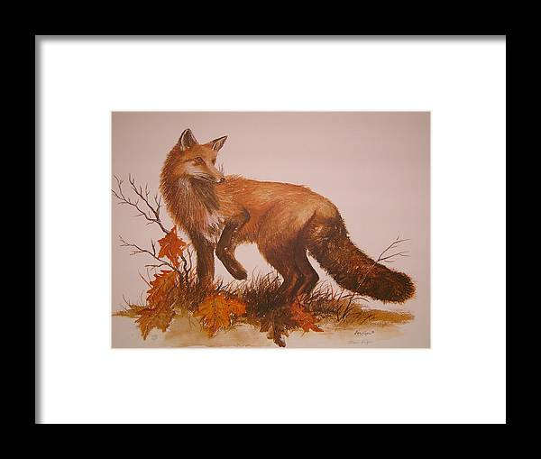 Nature Framed Print featuring the painting Red Fox by Ben Kiger