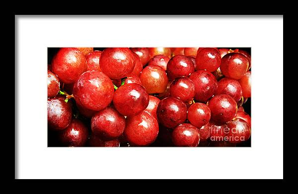 Grapes Framed Print featuring the photograph Red Grape Pano by Andee Design